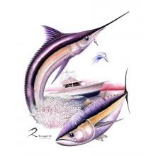 60 to Go Marlin Tuna