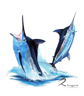 Black and Blue Marlin Cabo