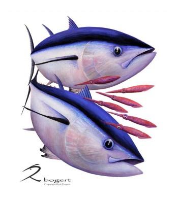 First Light Big Eye Tuna