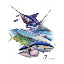 Flyers Regulator Marlin Tuna