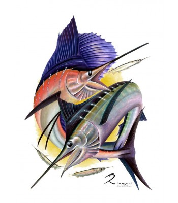 Sailfish Striped Marlin